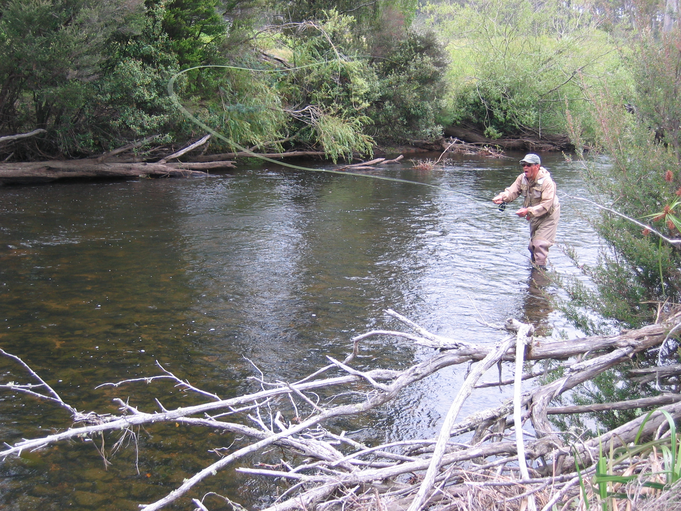 Trout Territory Client on St Patricks River 2
