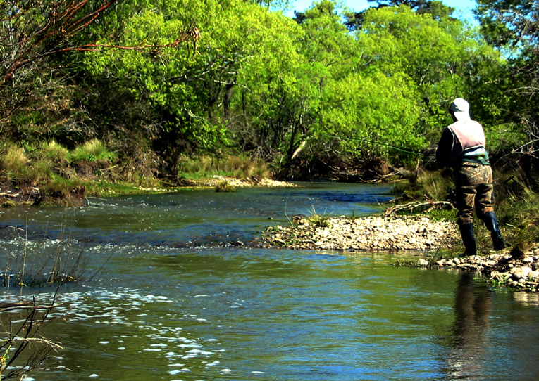 River and stream trout fishing